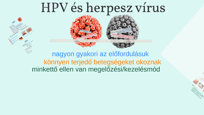 herpesz és papilloma