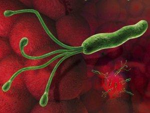 msd vakcina humán papillomavírus