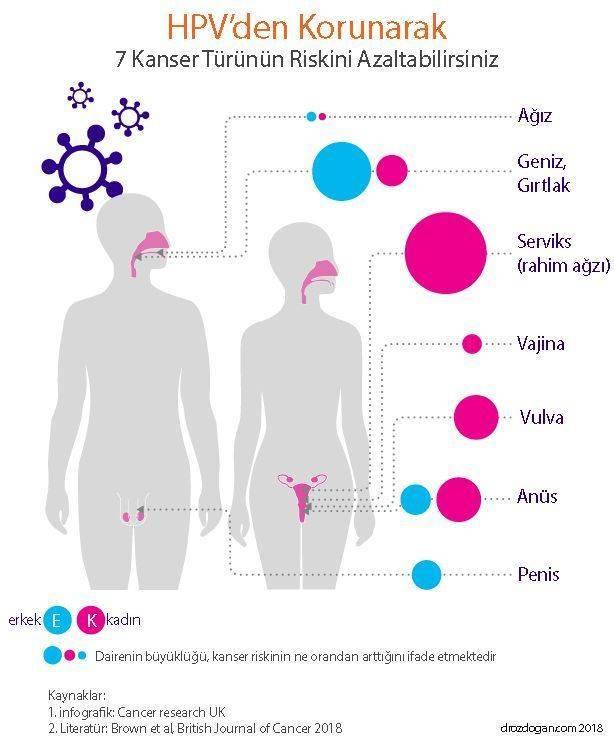 papilloma vírus uman romana a genitális szemölcsök kezelésének áttekintése