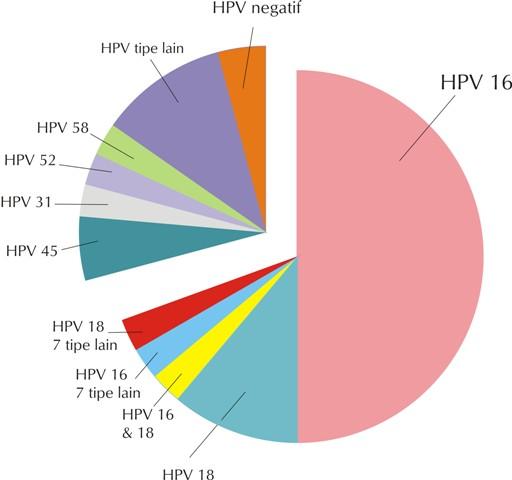 papillomavírus inkubációs detektálása petefészekrák a tünetei