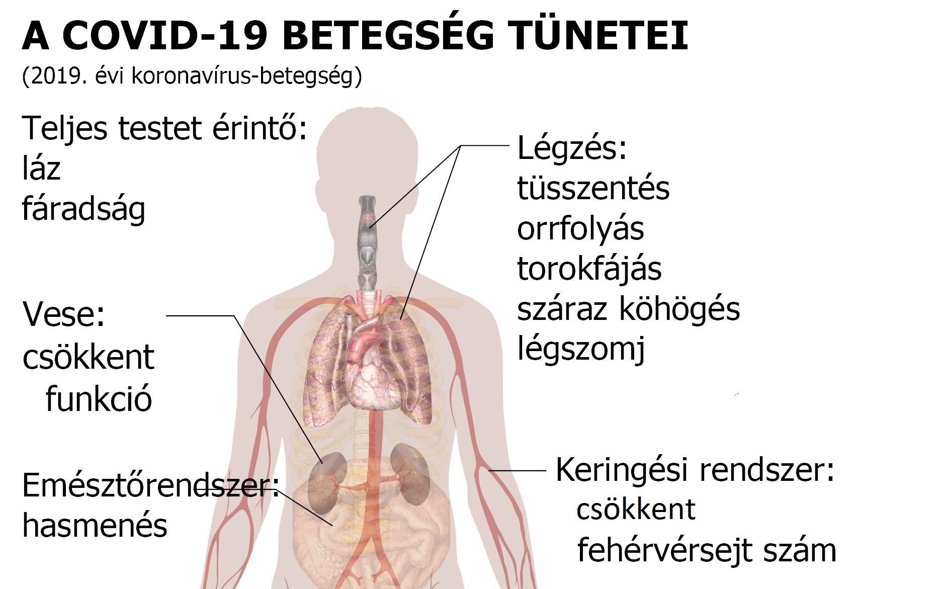 paraziták jelenlétének tünetei a test kezelésében)