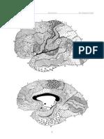 jelentése fibroepithelialis papilloma urethritis a genitális szemölcsök miatt