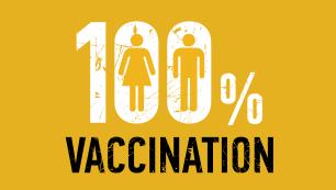 vidám papillomavírus vakcina