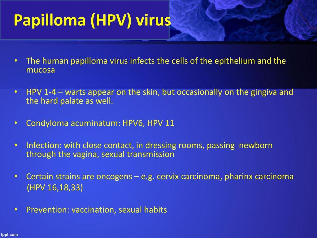 a papilloma vírus megnyilvánulásai