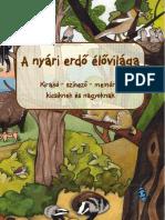 fordított növekedésű condyloma)