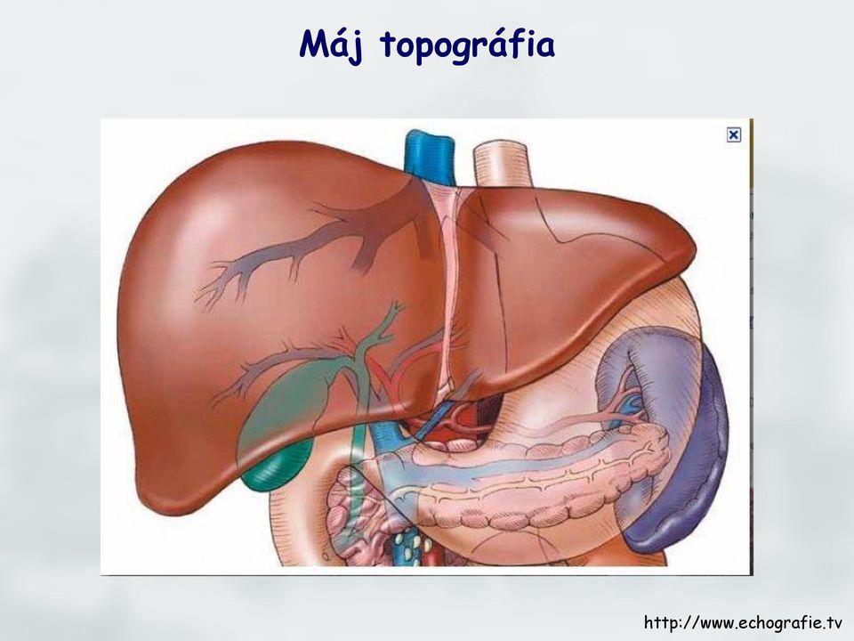 intrahepatikus epevezeték papillomatosis