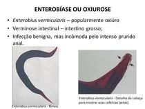 enterobius vermicularis megtalálható a vizeletben)