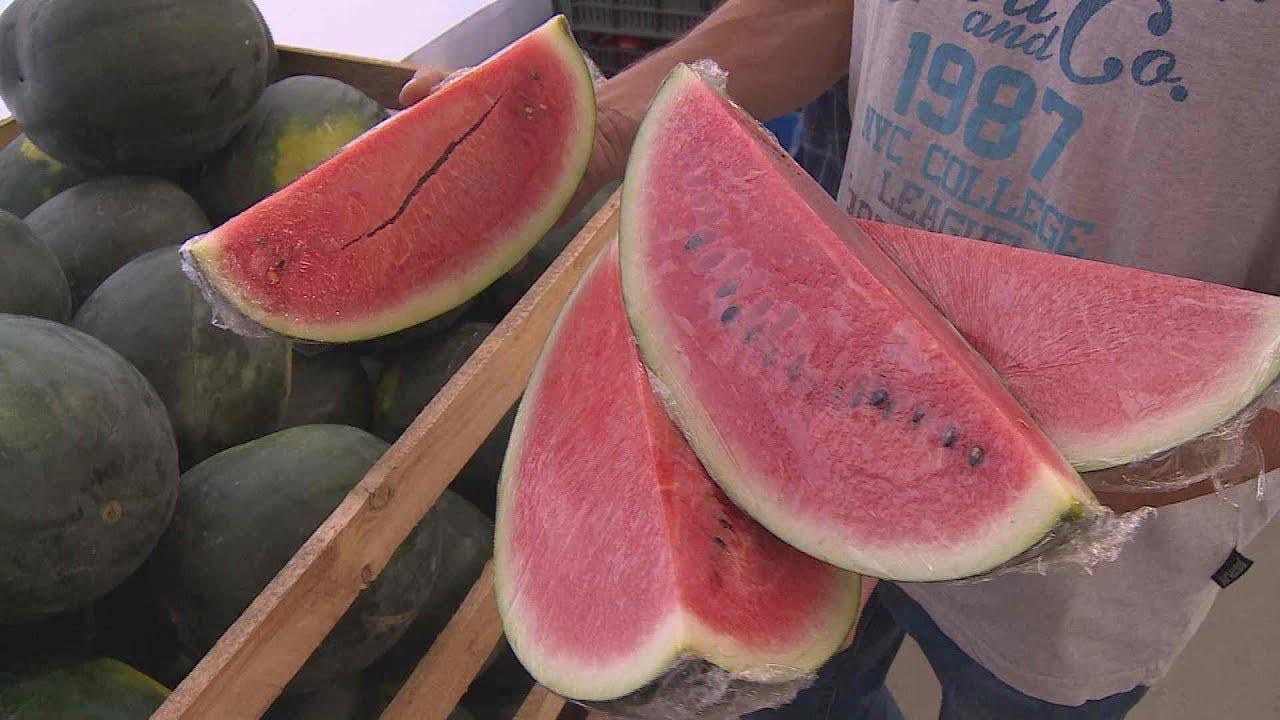 Paraziták görögdinnye tisztítása, Gyakori megbetegedések