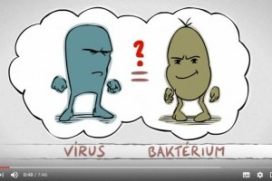 cernagilis elleni tabletták papilloma condilomi hpv