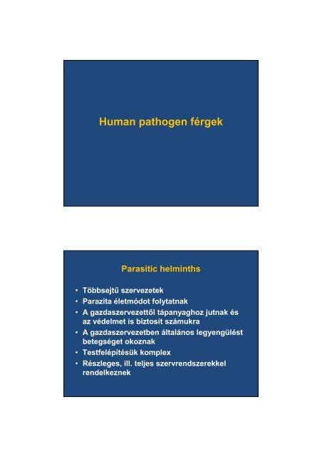 a paraziták májbetegséget okoznak)