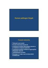 hpv vírus gaat niet weg hpv magas kockázatú sejtek