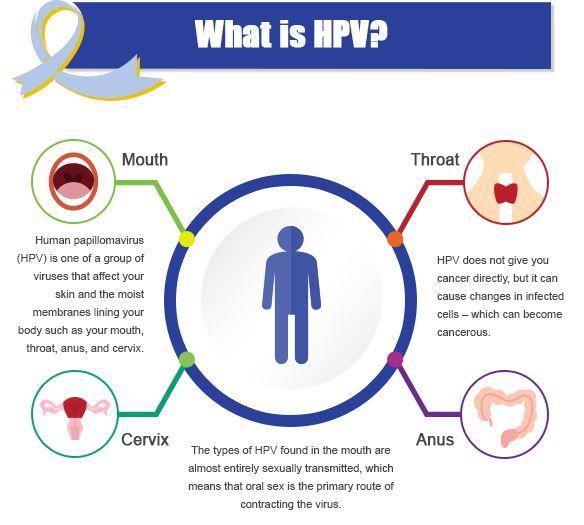 HPV: újonnan felismert kockázati tényező a fej-nyaki rákok kialakulásában | harsfavirag.hu
