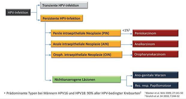 hpv impfung gegen warzen)
