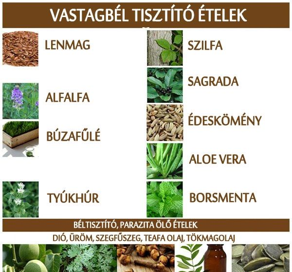 természetes ételek a vastagbél méregtelenítésére