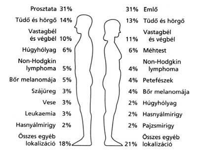 perineális szeméremtest szemölcsök