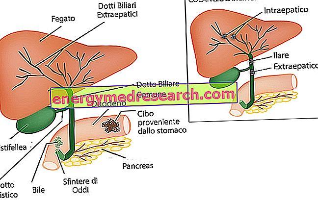 biliáris rák prognózisa
