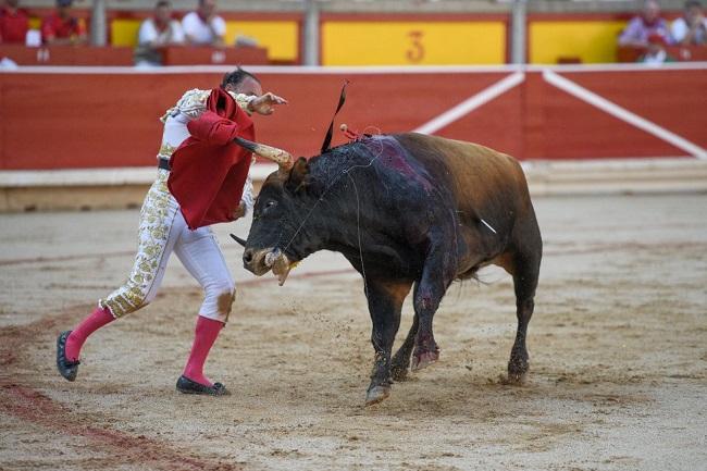 bika figyeli a bikát)