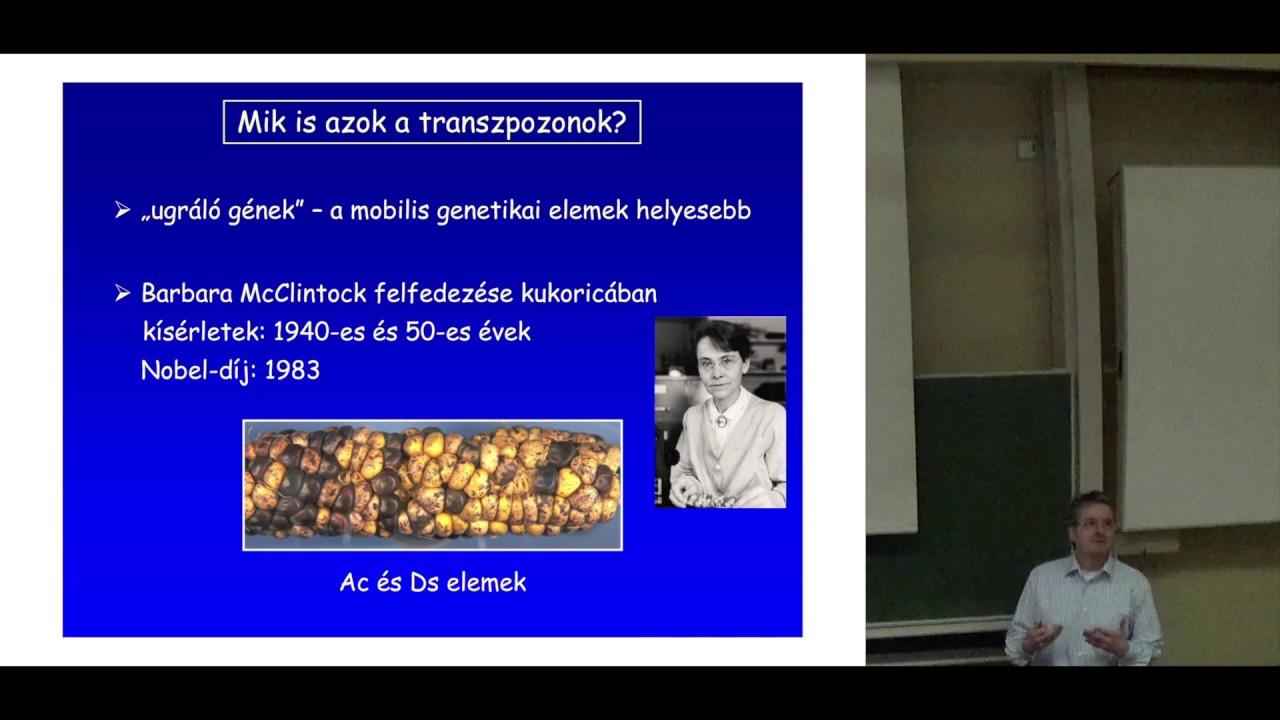 Evolúciós genomika