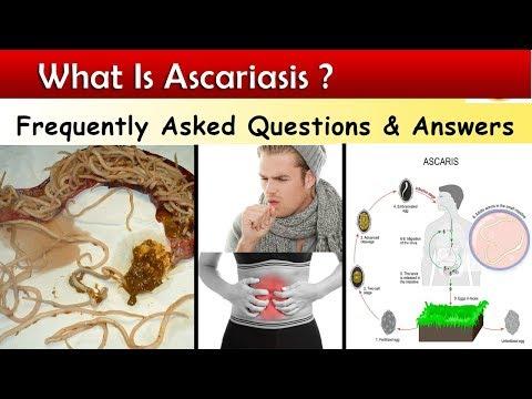 Ascaris kezelés tabletta felnőtteknek)