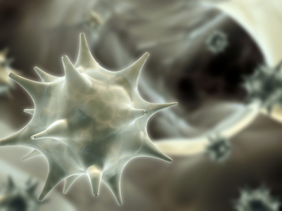 emberi papillomavírus véradás