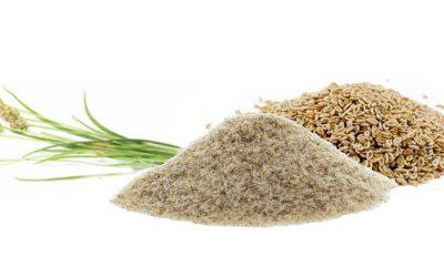 Gyógynövények a béltisztítás érdekében   Mikor, és hogyan segíthetnek?