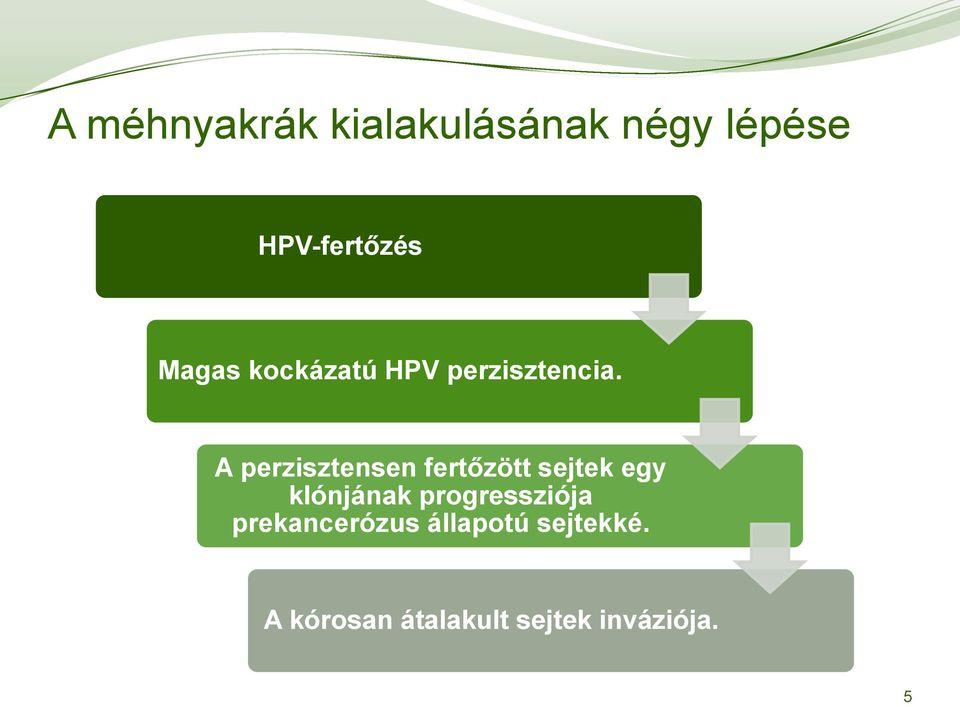 hpv magas kockázatú sejtek