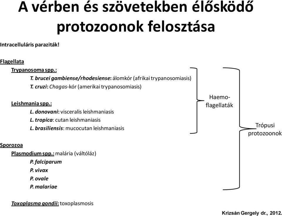 haemoparaziták meghatározása)