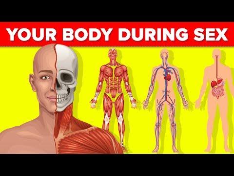 a körömféreg fejlődése az emberi testben