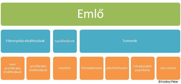intraductalis papillomatosis patológia