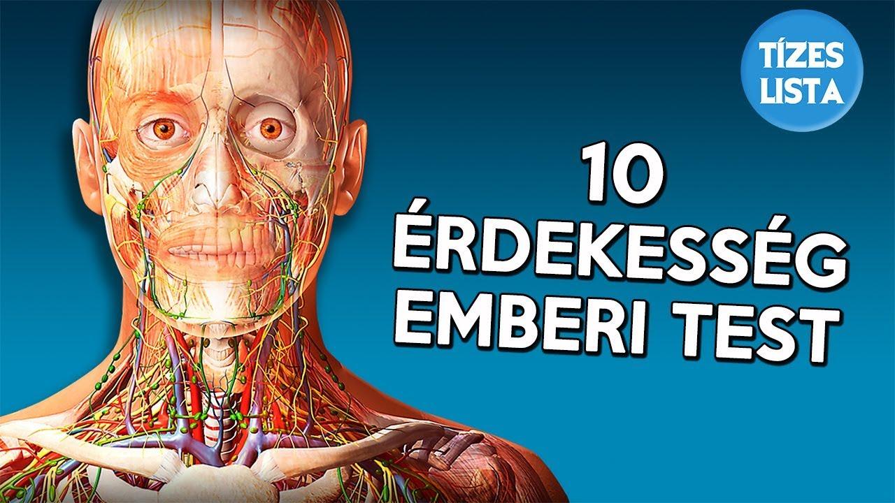 Az emberi test gyógyszerei, Az emberi test parazitáinak legjobb gyógyszerei
