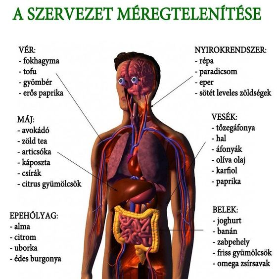 intenzív méregtelenítés lamblia és helminták tünetei és kezelése