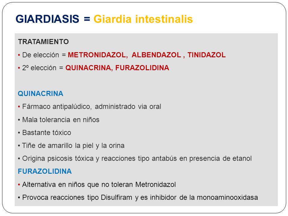 giardiasis albendazol)