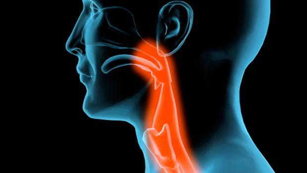 hpv vírus, valamint fej- és nyakrák