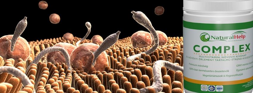 orvosság az emberi paraziták ellen