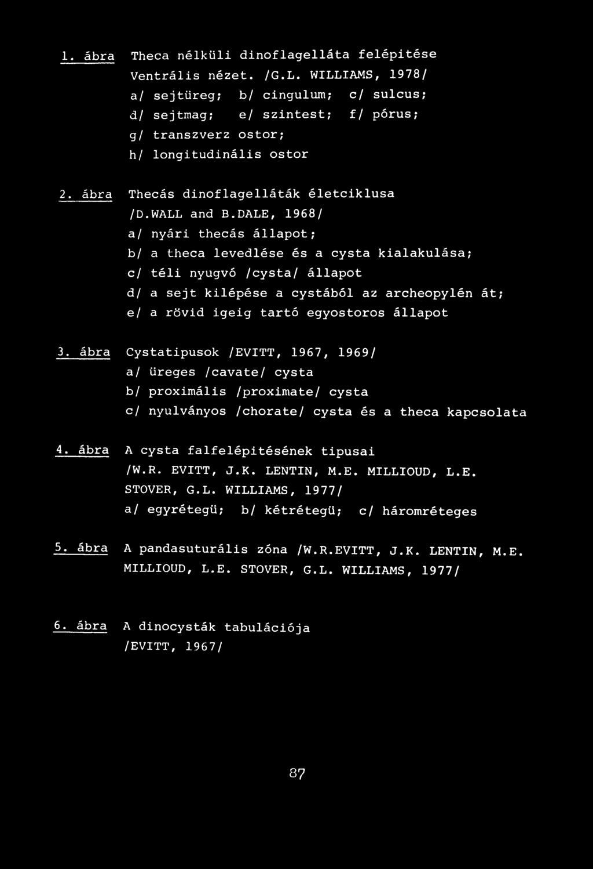 Sejtciklus – Wikipédia