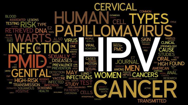 papillomavírus meghatározása egyszerű