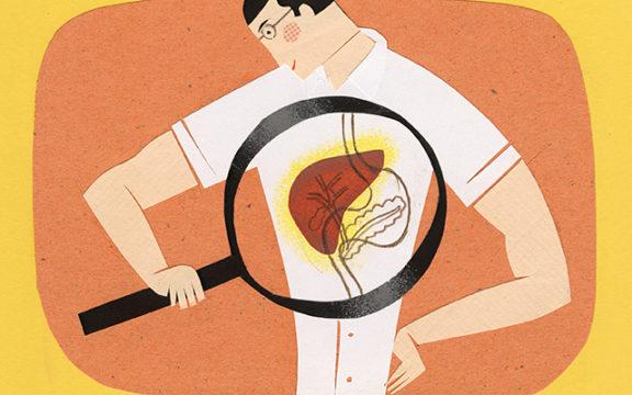 parazita jetra