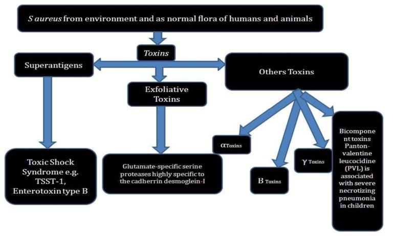 hogyan lehet megszabadulni a giardiától és a parazitáktól