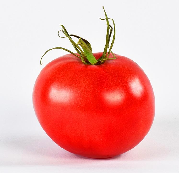 vörös paradicsom