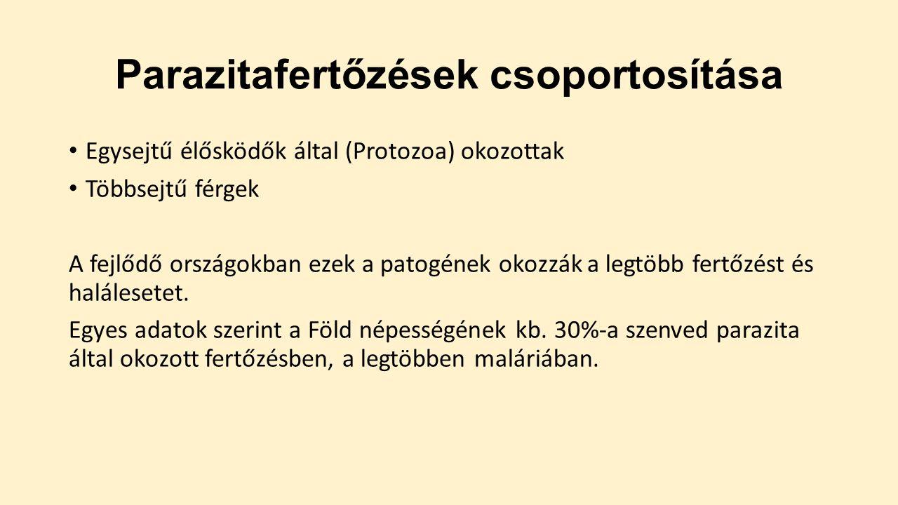 paraziták fertőzésének diagnosztizálása emberben)