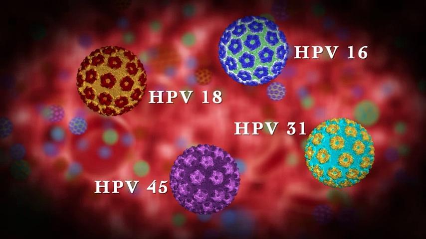 rákhoz kapcsolódó hpv típusok